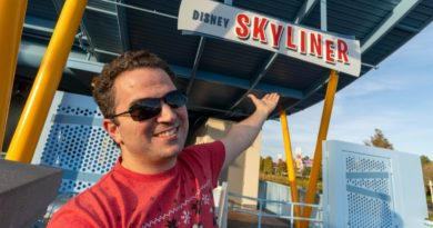 Answering your questions about the Skyliner Gondola System - Walt Disney World
