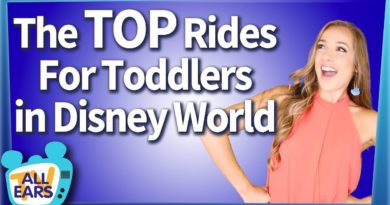 AllEars - Top Rides for You and Your Toddler in Walt Disney World
