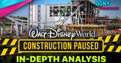 WALT DISNEY WORLD CONSTRUCTION PAUSED - An In-Depth Analysis