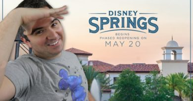 Disney Springs Opening Details! Flower and Garden Cancelled - Construction Starting!