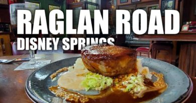 Dinner at Raglan Road in Disney Springs Dining Review - Cory Meets World   Mouse and Castle