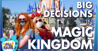 The Biggest Decision You'll Make In Magic Kingdom