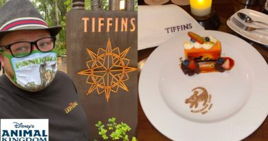 Animal Kingdom's Tiffins Restaurant 2021 - The Lion King Dessert & BEST Coffee In Walt Disney World