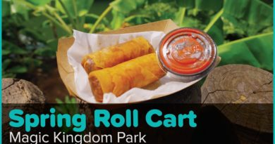 Adventureland's Tasty Cheeseburger Spring Rolls